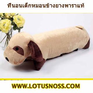 ที่นอนเด็กหมอนข้างตุ๊กตายางพาราแท้ NATURAL ANTI-MITE CHILD PILLOW LATEX กระต่าย - พร้อมส่ง