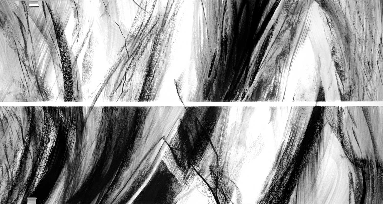 Annik Reymond - fusain 40 cm x 17 mètres, détail 4