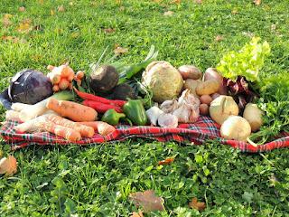 Légumes-Novembre