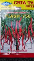 benih cabe flash 750, benih petani, tahan virus, buah lebat, cap kapal terbang, tahan layu, tahan cekaman calcium, Cabai Flash, Cabe Flash