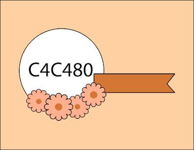 Crazy4Challenges - C4C480