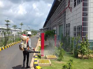 Dịch vụ diệt côn trùng cho khu công nghiệp