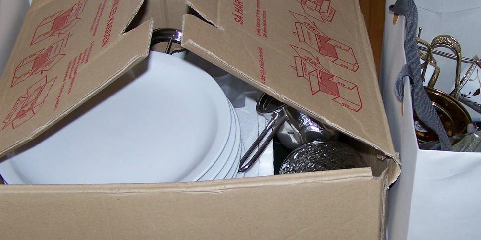 Opdateret Flytning for dummies: Gode råd til pakning af flyttekasser RC11