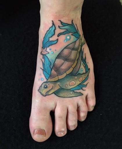 Este especial de tartarugas marinhas