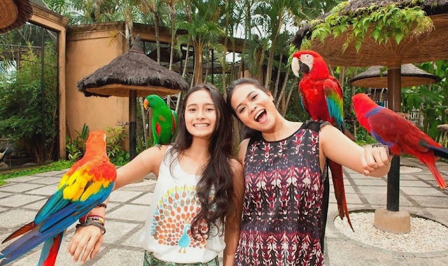 Bird and Reptile Park Bali