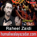 www.humaliwalayazadar.com/2016/10/raheel-zaidi-nohay-2017.html