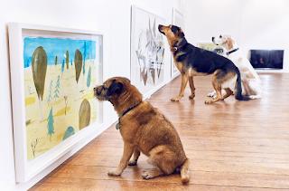 cães a visualizarem pinturas em tons visiveis