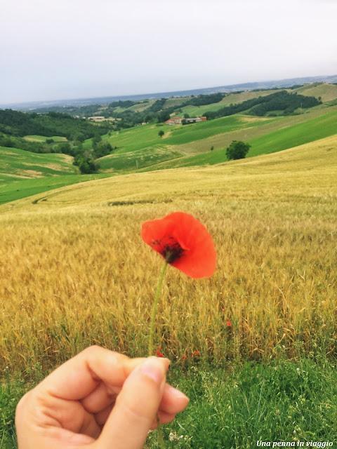 Escursione Via Francigena, Emilia Romagna