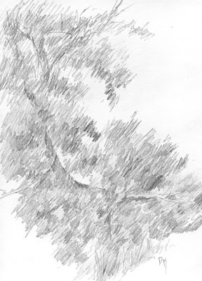 art sketch graphite nature plein air jordan river parkway