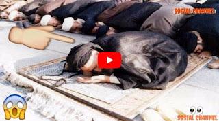 Video Cara Pengikut Syiah Shalat, Silahkan Ditonton!