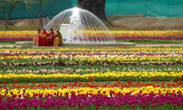 Indira Gandhi Memorial Garden