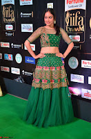 Nandita Swetha in a tight Green Choli Ghagra at IIFA Utsavam Awards March 2017 ~ 041.JPG