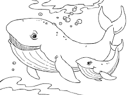 Printable Humpback Whale with Baby Coloring Sheet Online