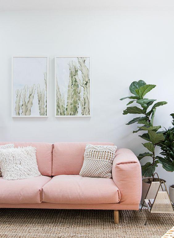 Las plantas en decoración son el complemento perfecto