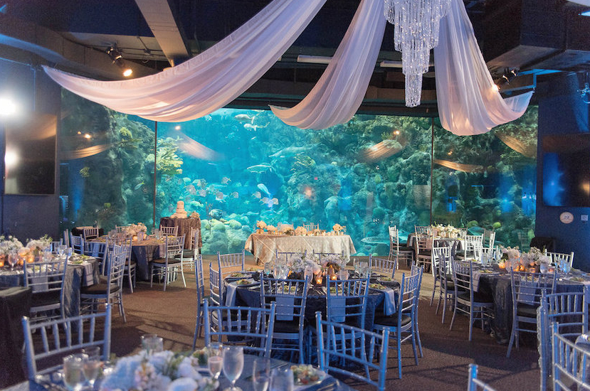 Cheap Vegas Wedding Ceremony