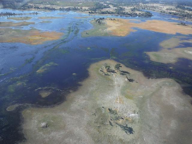Delta del Okawango, Sobrevuelo