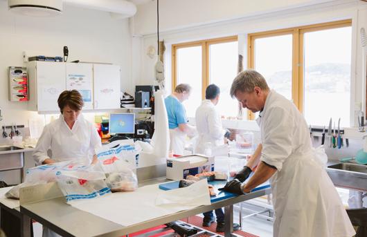 NIFES - Strenge Kontrollen beim norwegischen Lachs