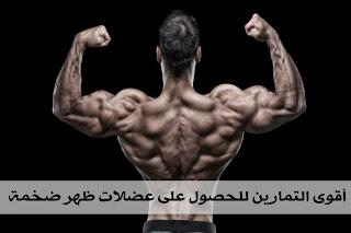 تمارين عضلة الظهر للحصول على عضلة ظهر كبيرة ومقسمة وذات منظر جميل