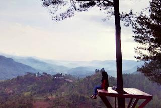 Bukit Pentulu Indah Kebumen Dapat Camping
