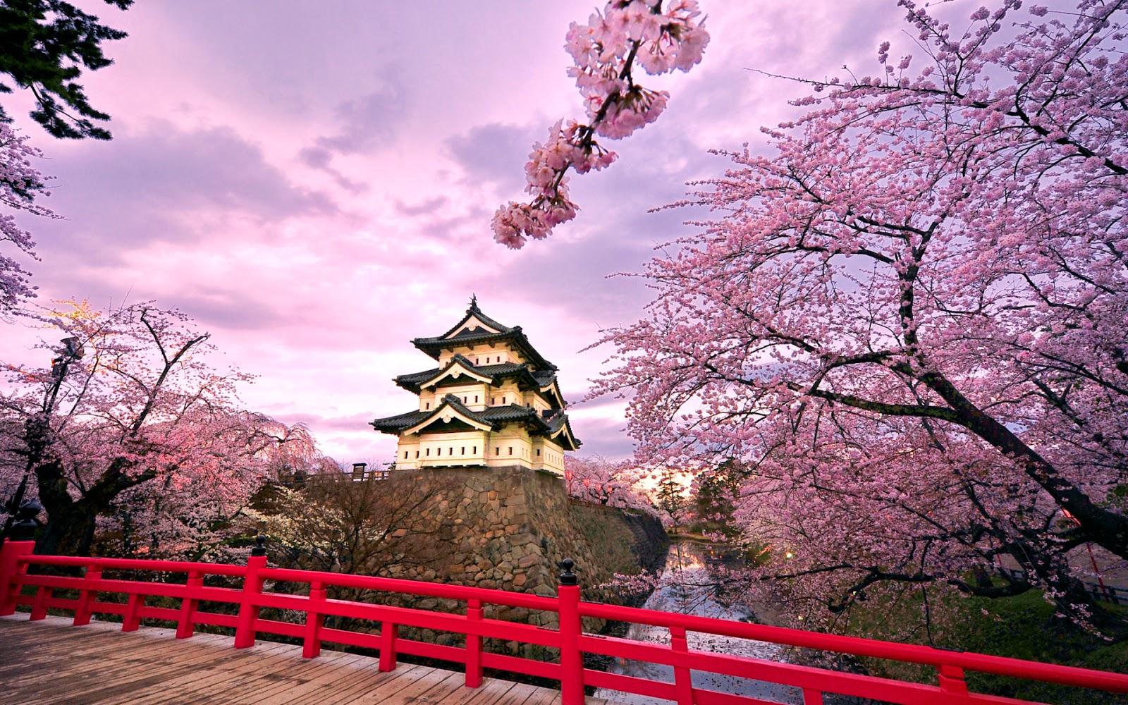 di jepang seperti tokyo lalu ada juga pemandangan alam gunung fuji dan masih banyak lagi yang membuat negara ini menempati peringkat ke 4