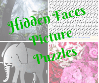 Hidden Faces Picture Puzzles for kids, teens and adults