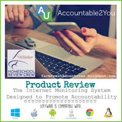Accountable2You: Internet Monitoring Service ~ Product Review