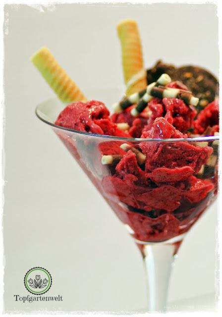 Buchtipp Eis genießen - verführerische Rezepte: Himbeer-Kokos-Eis mit Schoko-Kokos-Talern - Eis selber machen mit Himbeeren und Kokos - Foodblog Topfgartenwelt