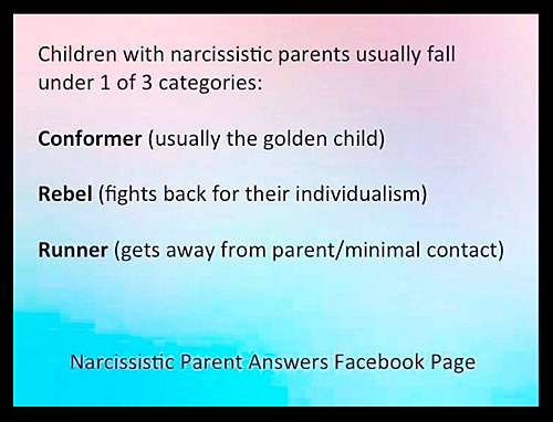 The Narcissistic Parent Of Special >> Misadventures With Angry Alcoholics Bullies And Narcissists