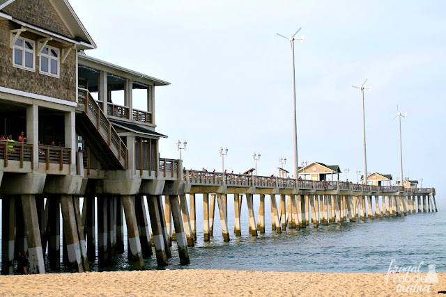 As a member of the North Carolina Aquarium association, Jennetter's Pier is dedicated environmental conversation, ethical angling, and the reduction of waste while increasing recycling.