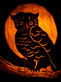 owl pumpkins halloween carving arts