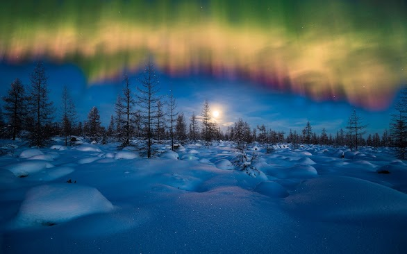 Winter Aurora Borealis
