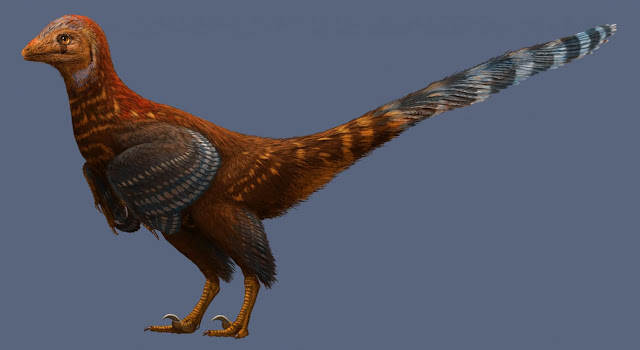 New birdlike dinosaur had modern feathers