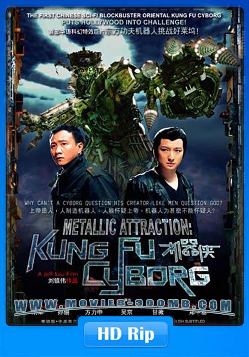 Kungfu Cyborg 2009 Hindi Dubbed HDRip 480p 300MB Poster