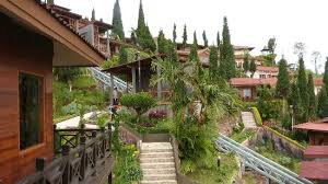 http://www.bromomalang.com/2015/09/informasi-penginapan-hotel-homestay.html