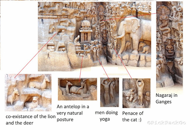 Life at the bank of Ganges - From Descent of Ganges Bas relief  - UNESCO World Heritage Site - Mahabalipuram India - Pick, Pack, Go