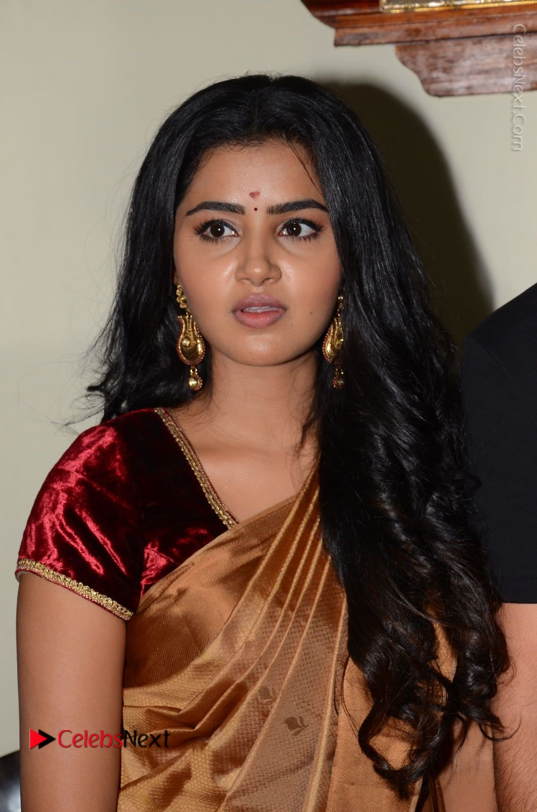 Anupama Parameswaran Stills in Silk Saree with Shatamanam Bhavati Team at Sandhya Theater