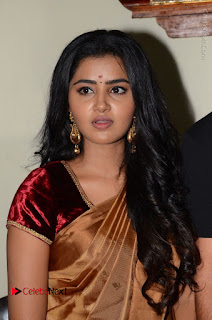 Actress Anupama Parameswaran Stills in Silk Saree with Shatamanam Bhavati Team at Sandhya Theater  0022.JPG