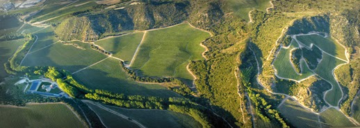Vista aérea del valle_Señorío de Arínzano_Chivite_Vino