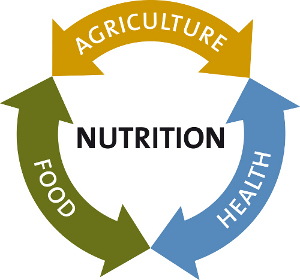 Image result for nutrition-sensitive