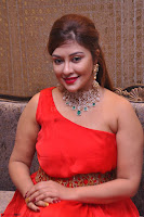 Payal Ghosh Looks Stunning in Red Half Shoulder Gown 011.JPG