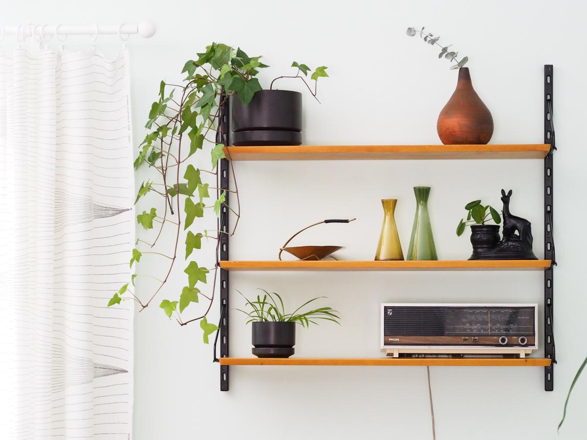 viherkasvit sisutuksessa, avohylly