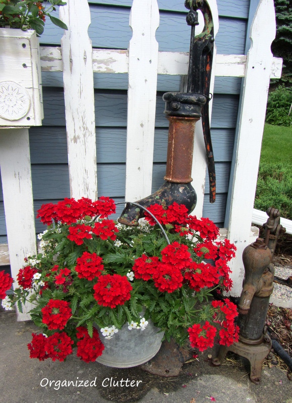 Rusty Old Pumps with Galvanized Pail of Verbena www.organizedclutterqueen.blogspot.com