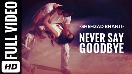 Shehzad Bhanji New Pakistani Songs 2016 Never Say Goodbye Latest Music Video