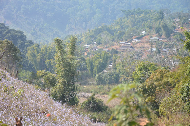 Village Shan