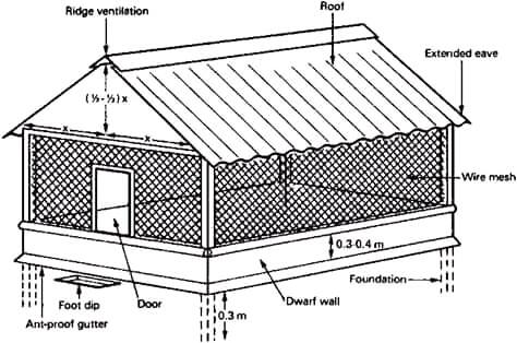 Poultry Farm Requirements