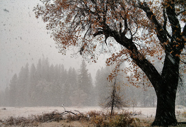 Rain and snow in Yosemite Valley