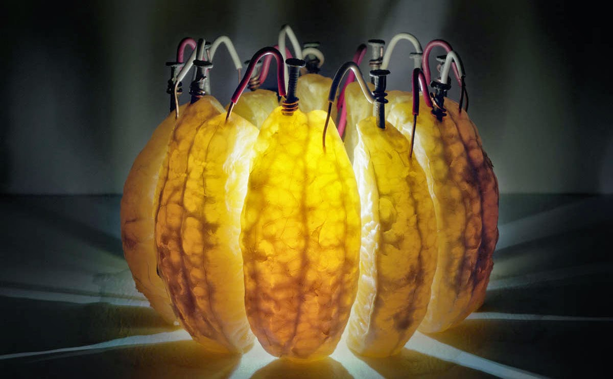Fruit Batteries to Power up LED Light