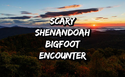 Scary Shenandoah Bigfoot Encounter