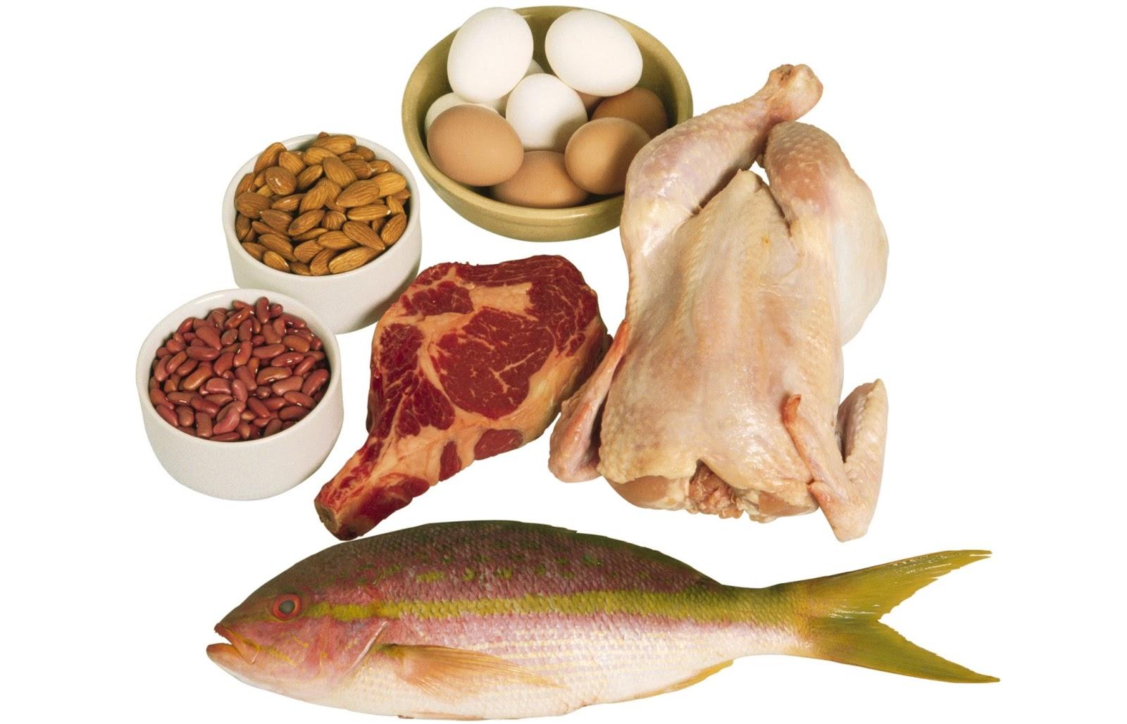 Protein İçeren Besinler ve Protein Kalitesi