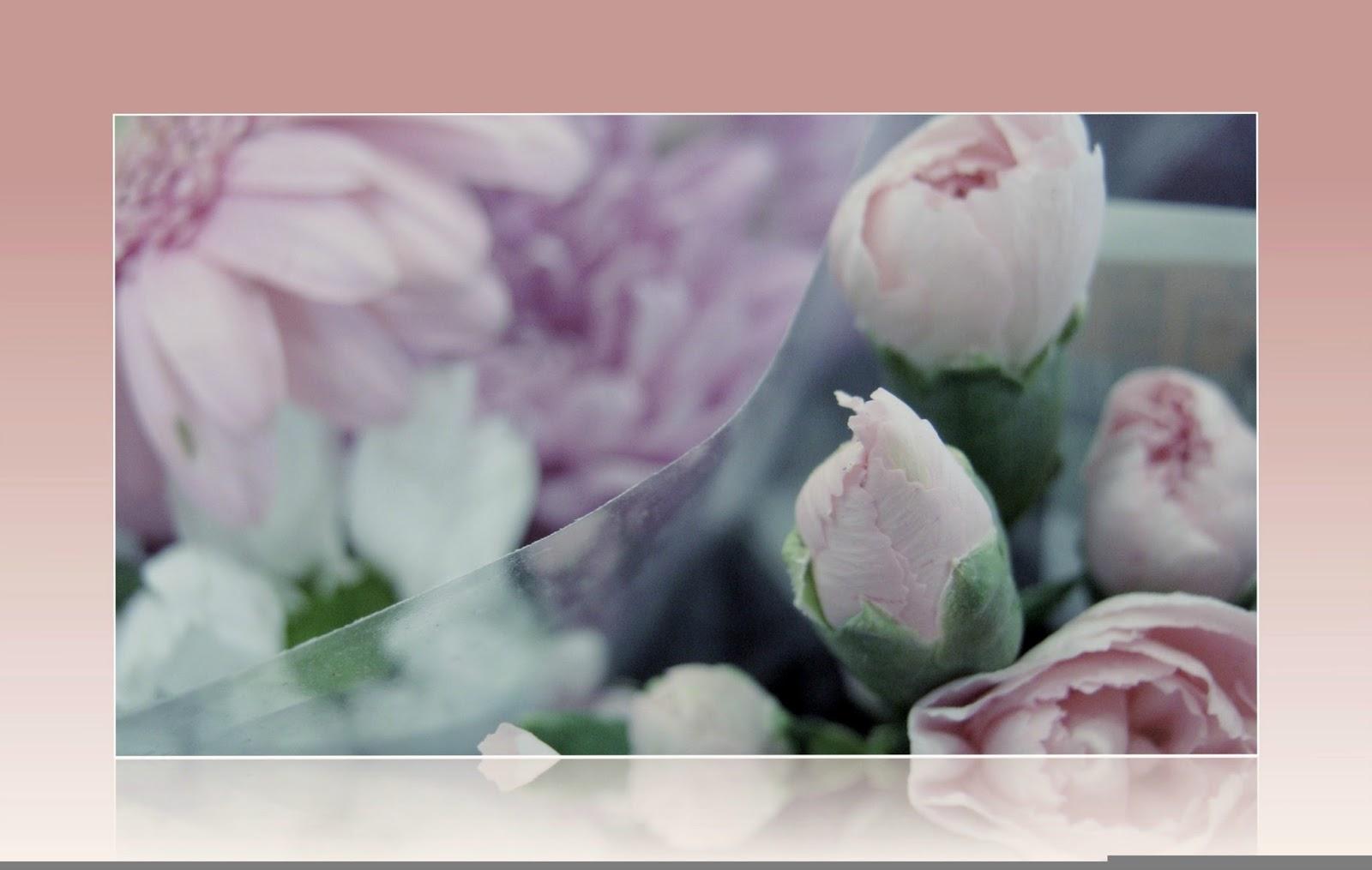 spring flowers framed
